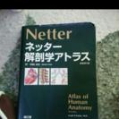 ネッター解剖学アトラス 送料込み