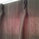 ■カインズ製・腰高窓用カーテン/110×100cm茶色 【発送可】