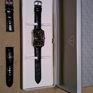 ICETEK スチールクインテンポⅠ 腕時計【スイス製】