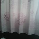 おサイズ違い パープルのカーテン