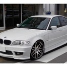 BMW 3シリーズ 318i ENERGYコンプリート車輌(ホ...