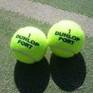 テニスをしませんか?