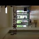 松山市平和通りの整体院です。女性整体師が施術致します。