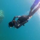 ダイビングの事なら、AQUATRIP DIVINGへ!沖縄の海にも...