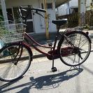 自転車 えんじ色