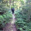 琵琶湖に浮かぶ沖島の森林遊歩道の整備活動のボランティア募集