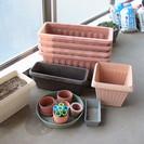 【終了しました】植木鉢 深型 アイリスオーヤマ 家庭菜園・球根可能