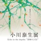 """小川泰生展 Echo in the depths """" 深層のこだま"""""""