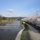 京都北山のマンスリーマンション:滞在型の観光やお仕事、スクーリングなどに…/abcdeFlat - 短期賃貸