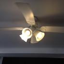 シーリングファン付き照明