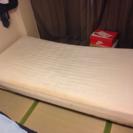 無料+シングルベッド