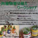 選べる☆リメイク缶多肉植物寄せ植えワークショップ
