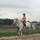 子供から大人まで気軽に乗馬が楽しめます