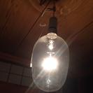 【終了】渋いイカ玉電球