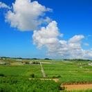 沖縄南部の青い海、青い空の八重瀬町で働いてみませんか?