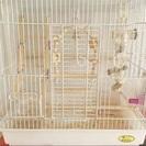 鳥 ゲージ バードゲージ30【飼育セット】