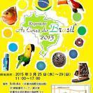 ブラジル展「ブラジルの色彩」&ワークショップ