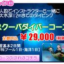 ダイビングするなら小田原で2つの初心者コースで始めよう!
