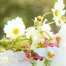 結婚式の二次会、1.5次会の幹事代行は「大人の二次会」へ!