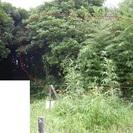 千葉県旭市神宮寺 雑木林  30万円 海まで1.8km