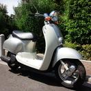 No.60 原付50cc ホンダ ジョルノクレア 4サイクル です ☆.。.:*・