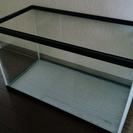水槽 60cm×30cm×36cm