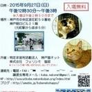 9月27日(日曜)第16回猫の譲渡会(NPO法人神戸猫ネット&株式...