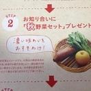 らでぃっしゅぼーや★興味のある方★おすそわけセット★3000円分G...