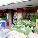 開店35年目の昔ながらの洋食.喫茶店です。