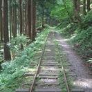 元京都在住ガイドと行く 芦生原生林トレッキング 京都の町家に泊まり...