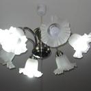 電球6個の照明です。
