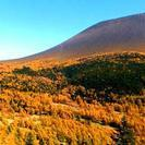 一面の黄葉の世界 浅間(黒斑)山と四阿山 温泉泊トレッキング