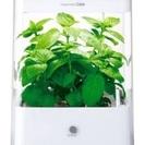GreenFarm Cube 水耕栽培器