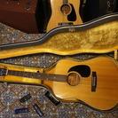 アコースティックギター Morris W20