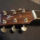 アコースティックギター Morris MVー701