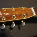 アコースティックギター Morris TFー801