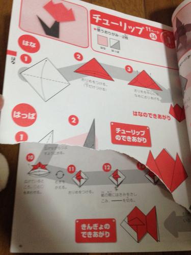 クリスマス 折り紙 折り紙 本 : jmty.jp