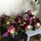 お花を楽しむ教室フラリパ