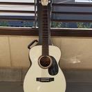 白いギター THREE S F180W スズキバイオリン