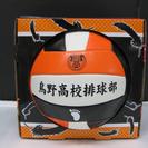 ハイキュー‼︎烏野高校バレーボール(値下げした)