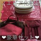 ノエビア化粧品ポーチセット【非売品】