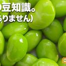 世界最高の豆知識 アップデートブレーン