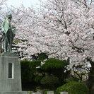 4月3日(日)讃友会!桜まつり観賞会