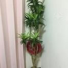 造花 フェイクグリーン 1000