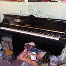 フローラ ピアノ