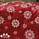 真っ赤な毛布(*^^*)