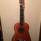【成立❗️】クラシックギター