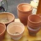 陶器の植木鉢差し上げます(交渉中)