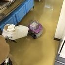 ハウスクリーニング、エアコン洗浄、ビルメンテナンス、不用品回収、ゴ...