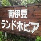 【南伊豆ランドホピア】貸別荘管理人 募集中!